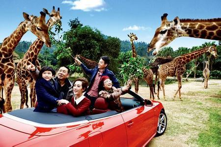跟团游>广州长隆野生动物园双飞五日